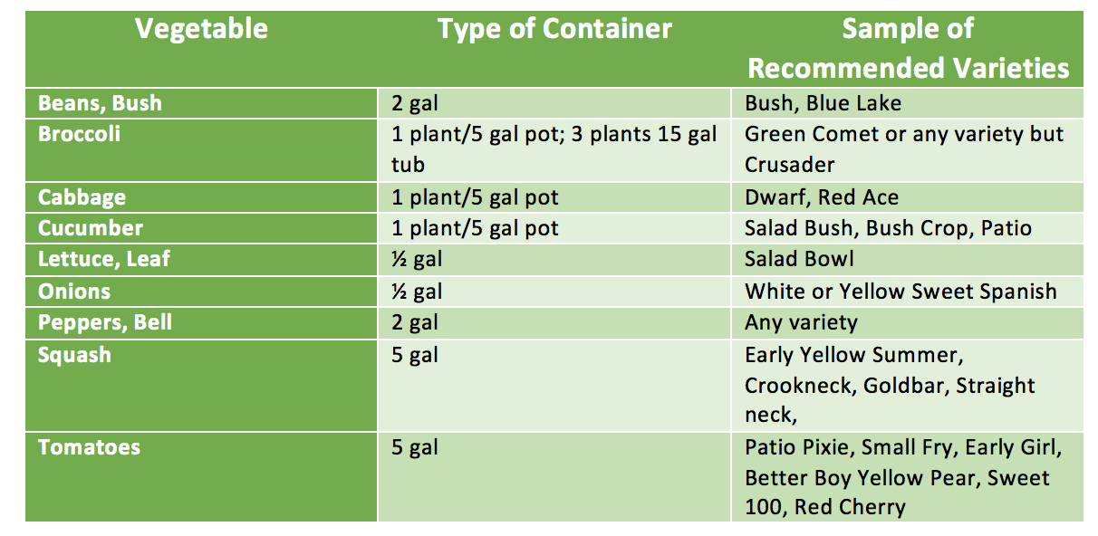 Container recommendations for vegetables